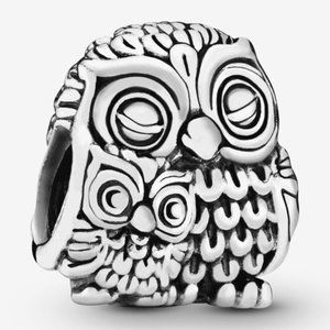 📿Pandora  Mother Owl and Baby Owl Charm